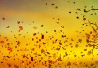 Fall Equinox Celebration (Shuswap Lake)