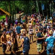 Bushwacked 2014 (146)