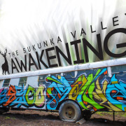 Awakening Music Festival 2015 Bus Cover Good Color backing